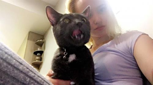 Dove Cameron taking a selfie