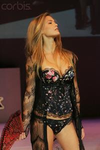 Bar Refaeli in lingerie