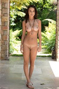 Dillion Harper - breasts