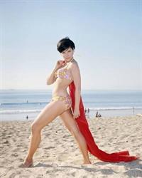 Yvonne Craig in a bikini