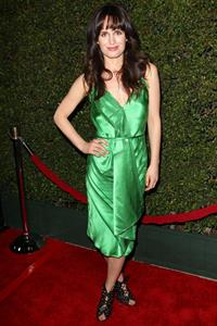 Elizabeth Reaser -  Young Adult  Premiere in Los Angeles on December 15, 2011