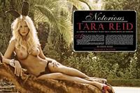 Tara Reid nude for Playboy January/February 2010