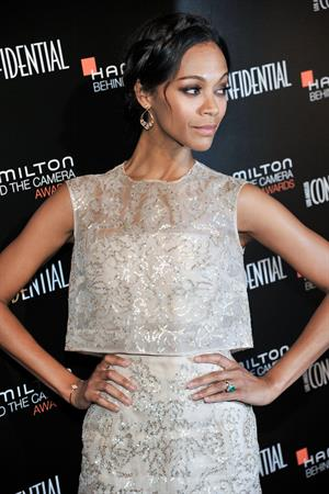 Zoe Saldana Hamilton Behind The Camera Awards - 7th Annual - Los Angeles, Nov. 10, 2013