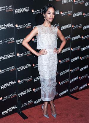 Zoe Saldana Hamilton Behind The Camera Awards - 7th Annual - Los Angeles, Nov. 10, 2013
