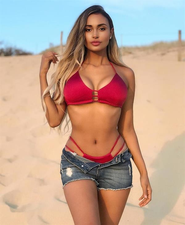 Marona Tanner